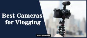 Best-Cameras-for-vlogging